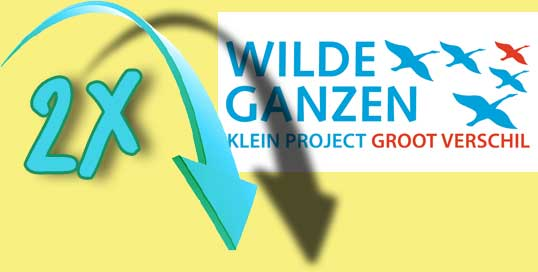 Wild Geese double your donation
