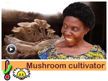 030 Mushroom cultivator, Bernadette