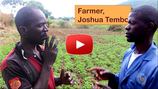 Video Joshua Tembo, farmer