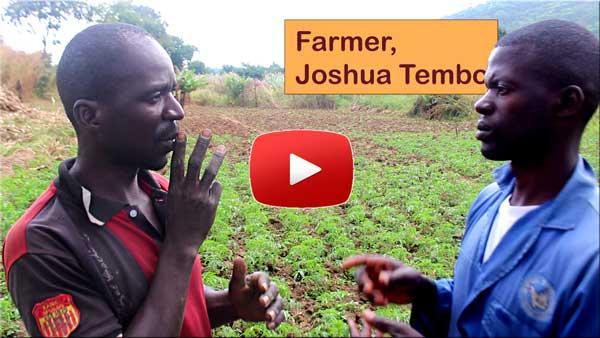 Video Joshua Tembo, farmer