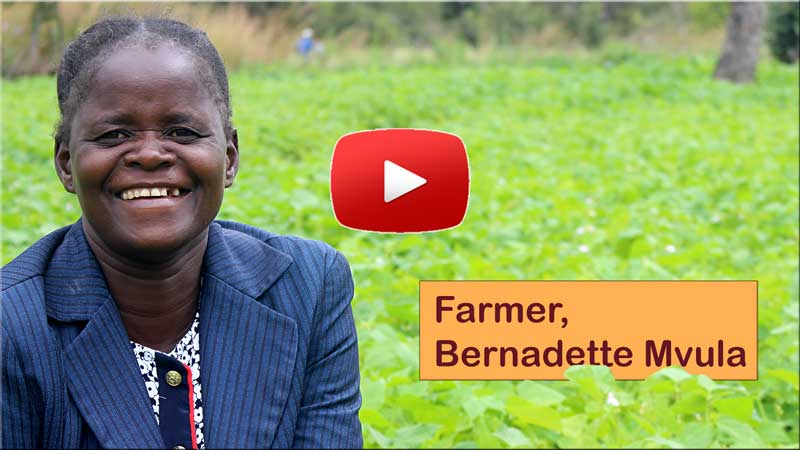 Bernadette Mvula explains