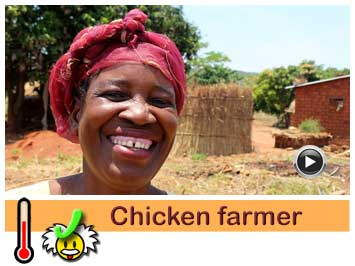 056 Chicken farmer Stelia needs a borehole