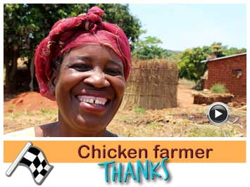 056 Chicken farmer, Stelia