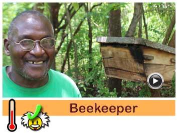 065 Beekeeper, Chrispin Daka