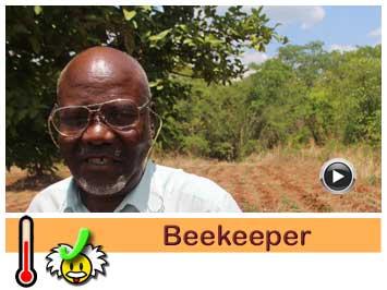 073 Beekeeper, Bandson Tembo.