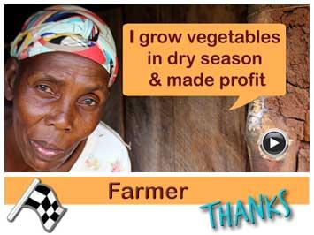 080 Farmer, Sofia Lungu