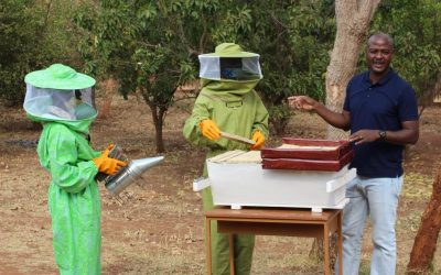 Trained more than 100 beekeepers