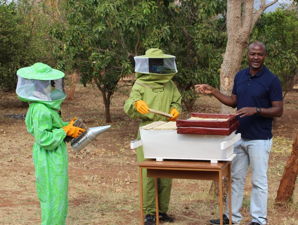 Beekeeping training
